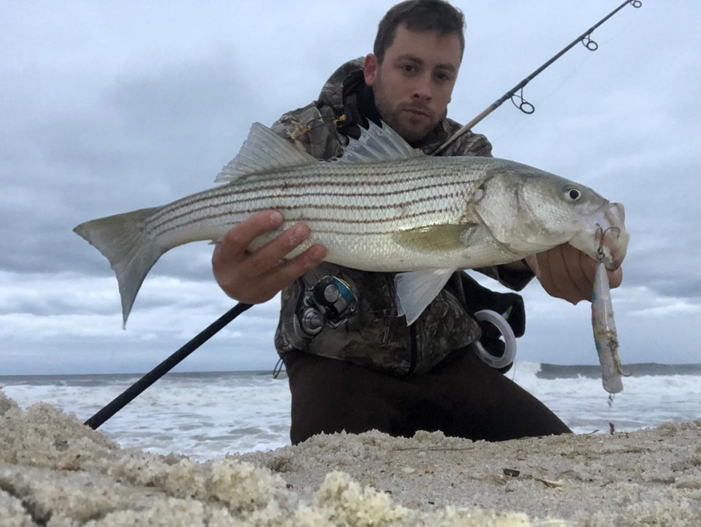 Catching bass and blues on topwater plugs